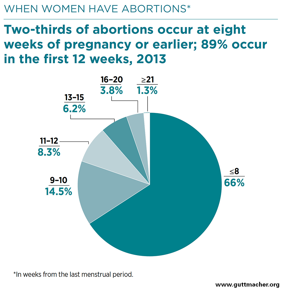 Abortion in the United States by state